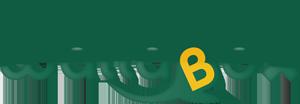 Wallabox •  Stockage pour particulier et professionnel